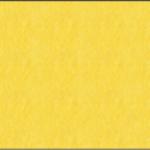 Yellow (05)