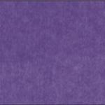 Purple (41)